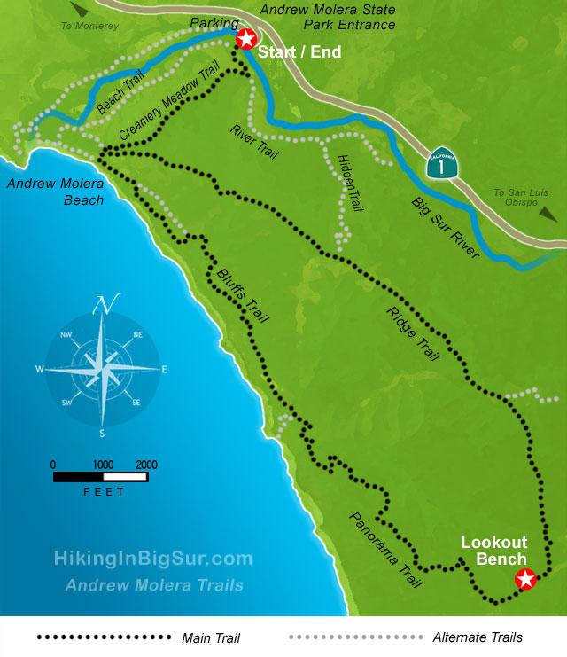 hiking in big sur andrew molera loop